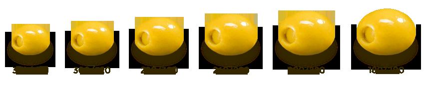 calibre-olives